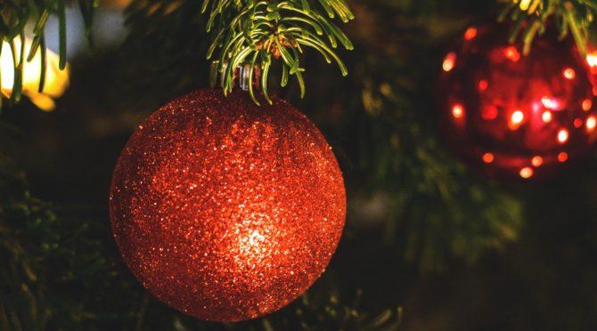 Natale in Compagnia: Kusama Infinity, Karwann, Studio 54, The Bill Murray Stories e molto altro anche per i bambini
